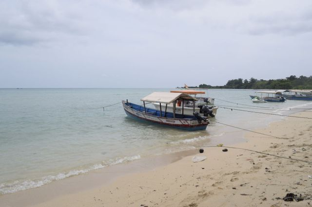 Photo of Bharatpur Beach, Neil Island, Bharatpur, Andaman and Nicobar Islands, India by Priya Saxena