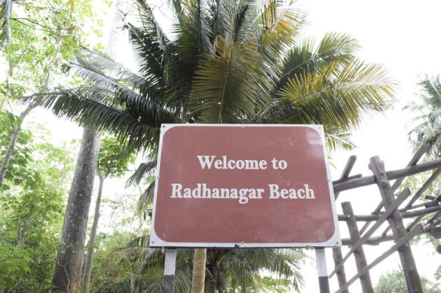 Photo of Radhanagar Beach, Andaman and Nicobar Islands by Priya Saxena