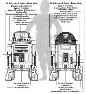 R6series astromech droid  Wookieepedia, the Star Wars Wiki