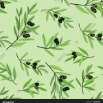 Olive Tree Branch Vector Photo Free Trial Bigstock