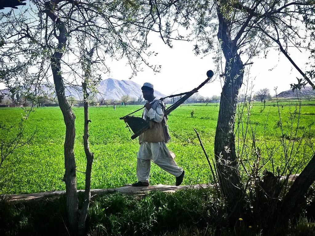 Nuestro gerente de casa de huéspedes, Mehrab dijo que los operadores de ginebra de algodón fueron frecuentemente mal identificados como militantes con armas largas y se desparramó desde helicópteros soviéticos