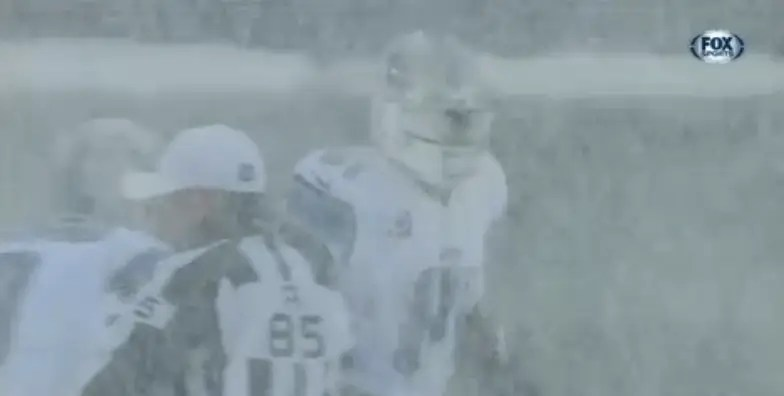 Eagles Lions Play Snow Game Pictures Business Insider