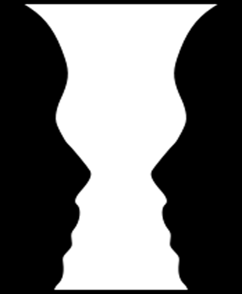The perception illusion: Do you see two faces, or a vase? Depending on whom you ask, it could be either.