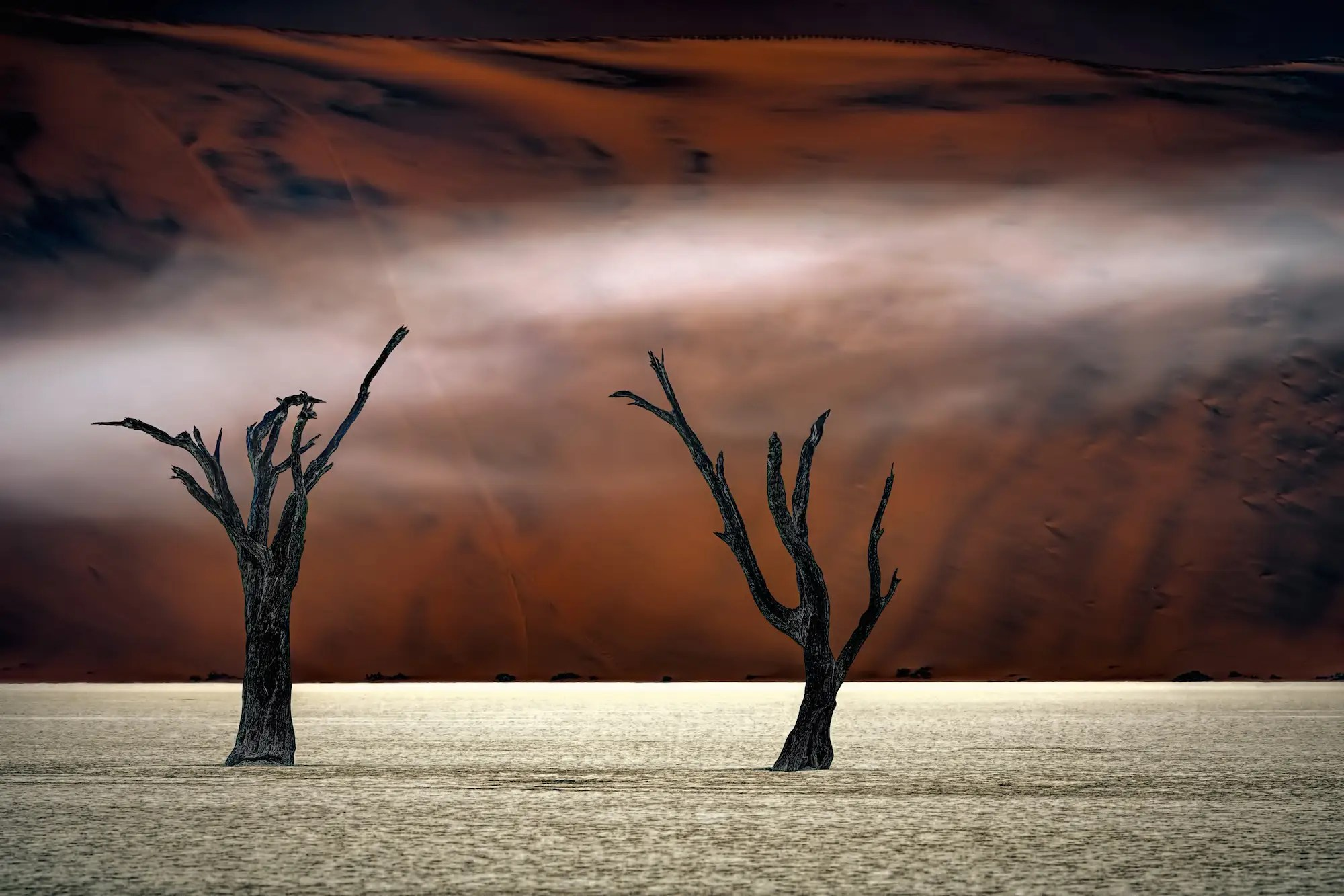 "There's something haunting in Poppe's shot from Deadvlei, Sossusvlei, Namibia. A third image from the third-place winner of the ""Photographer of the Year"" contest."