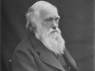 Charles Darwin was considered an average student. He gave up on a career in medicine and was going to school to become a parson.