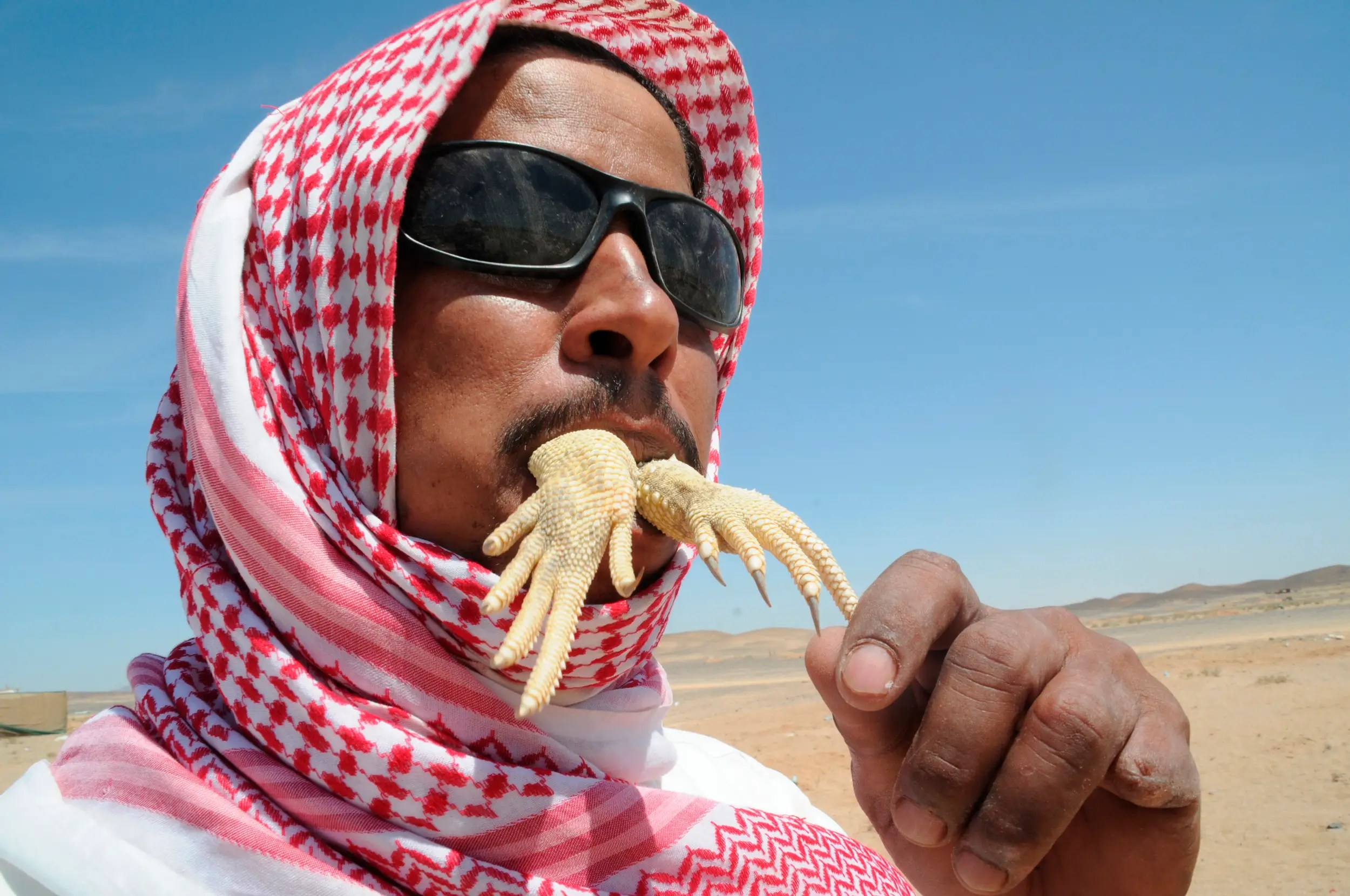 """A Saudi Arabian man crunches on the hands of an Uromastyx lizard, an animal whose blood is believed to treat diseases and strengthen the body. Also known as """"dabb lizards"""", these small reptiles are often caught by hooks or sniffer dogs and are enjoyed as a delicacy in many parts of the Middle East."""