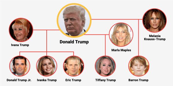 Donald Trump's family tree - Business Insider