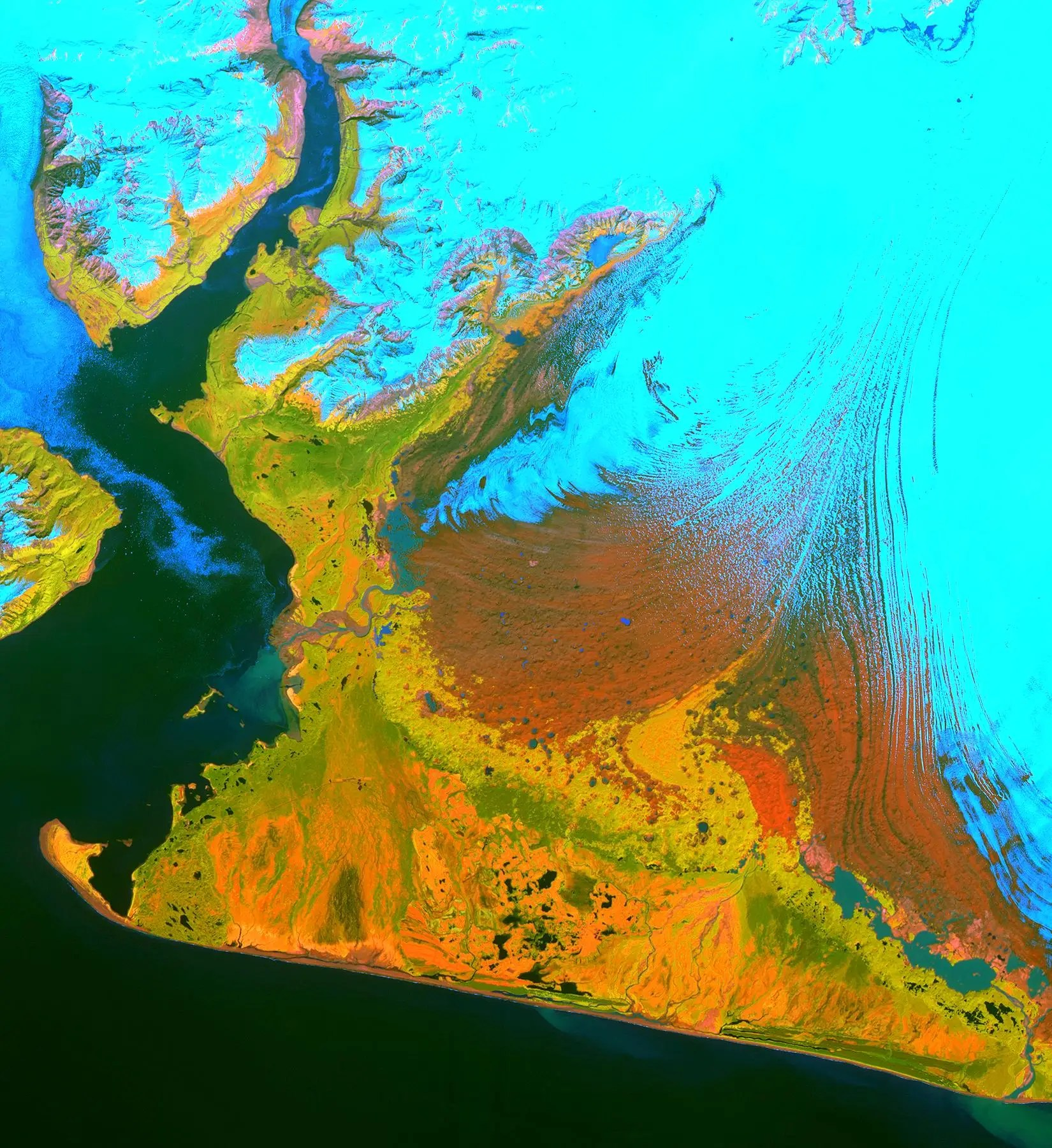 ASTER tracks the size of glaciers, like the Malaspina (below) in Alaska. The ice is in blue and vegetation is in yellow.