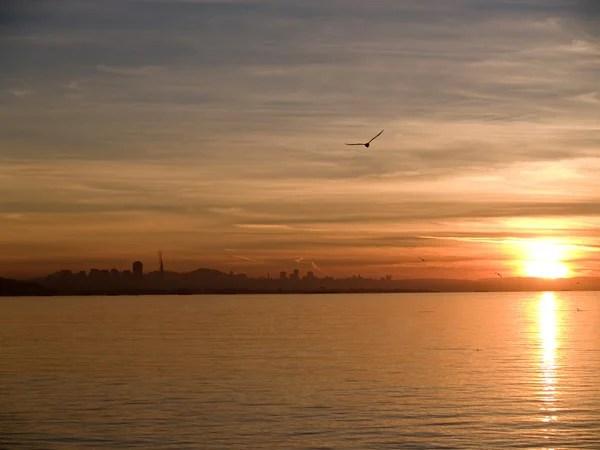 Силует Пасажирське судно на тлі заходу сонця — Стокове ...