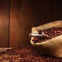 Are You Aware of Difference in the Coffee Roasting Beans?