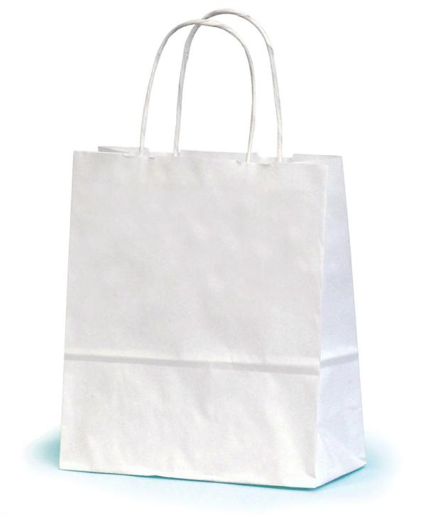Small White Paper Gift Bag With Twisted Handles 19 x 7.5 x ...