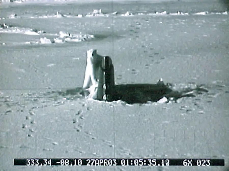 In 2004, the Connecticut was attacked for 40 minutes by a very curious polar bear