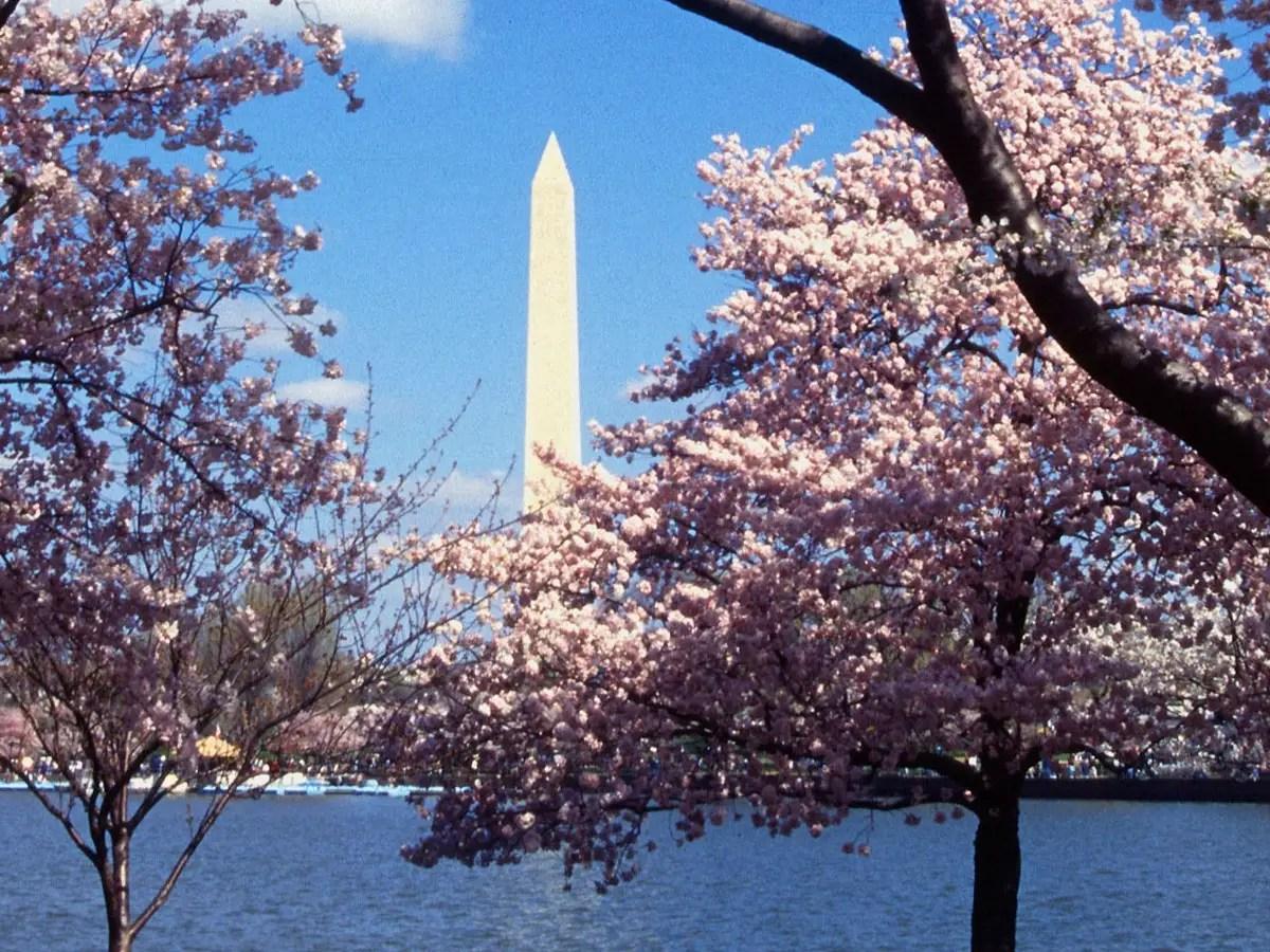#6 Washington, D.C.