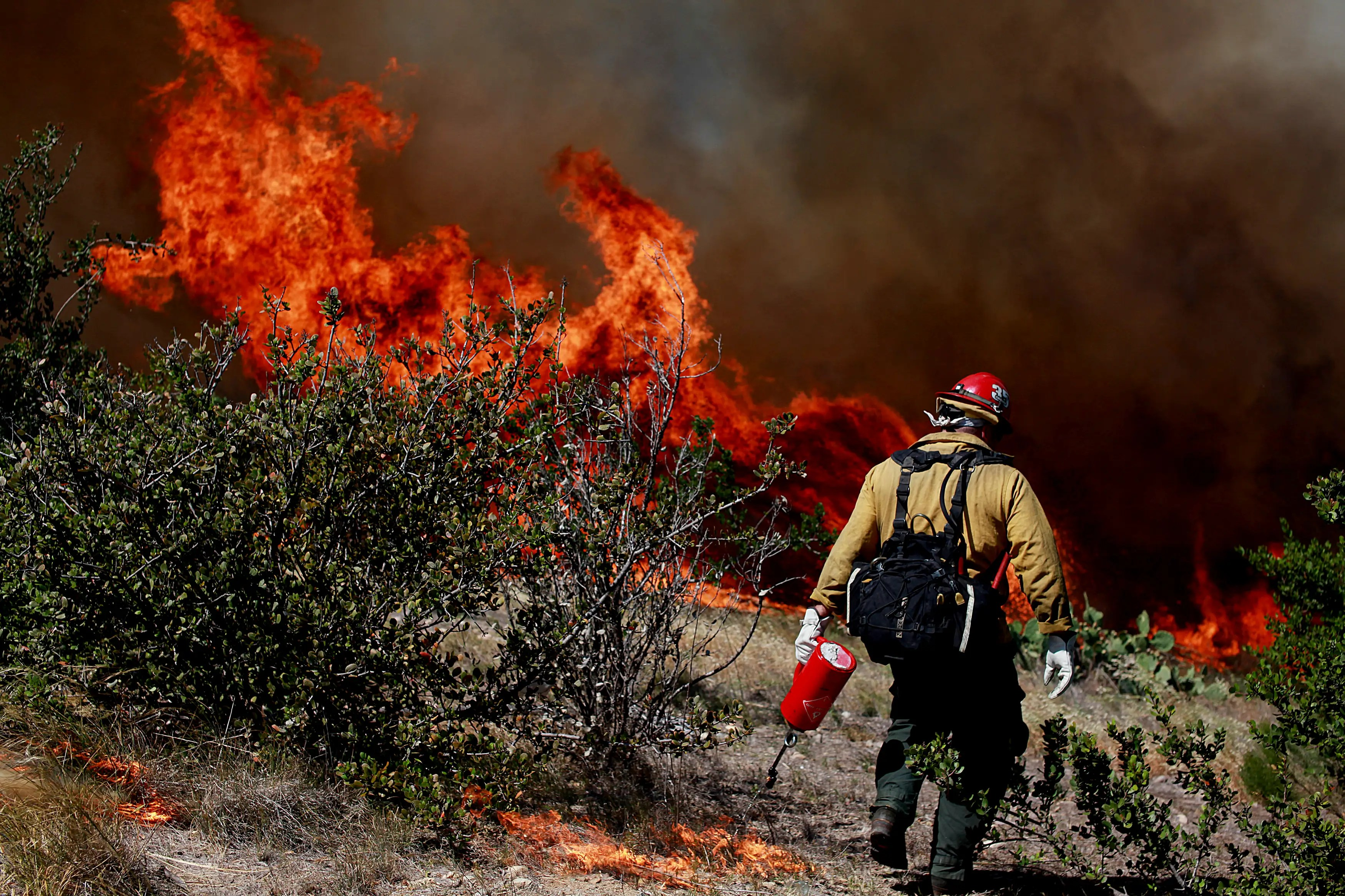 California's drought is leading to dangerous wildfires, like this one near San Diego in May.