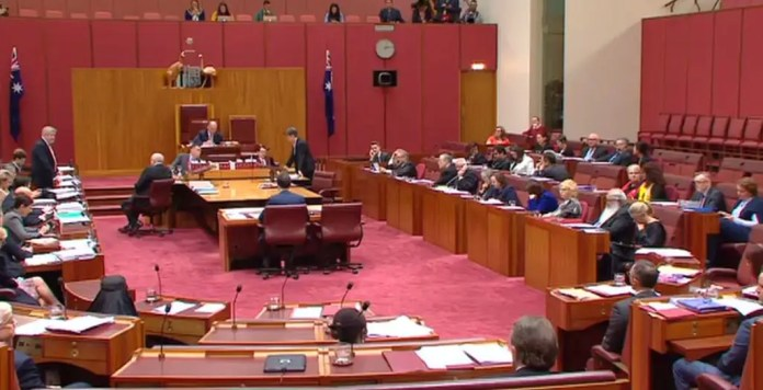 Senate Hanson Australian lawmaker shocks Senate by turning up in a burqa Australian lawmaker shocks Senate by turning up in a burqa senate hanson