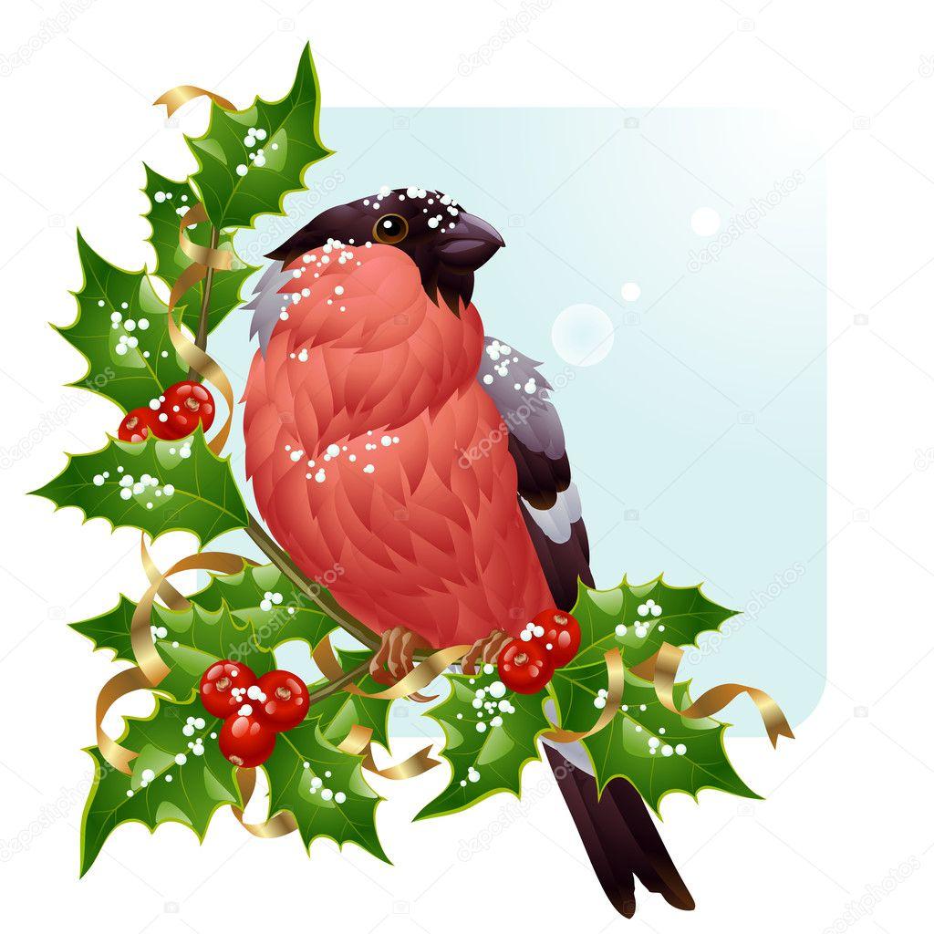 Christmas Greeting Card Vector Bullfinch And Holly