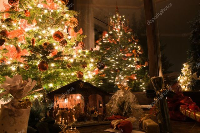 Image result for christmas scenery