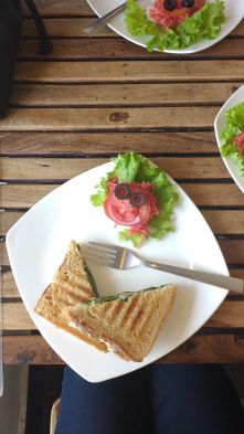 Chicken grilled sandwich with a smiley salad served at Moonpeak cafe- Mcleodganj