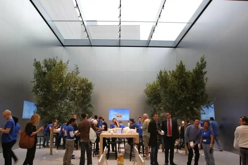 Apple's store in Bondai has trees in it.