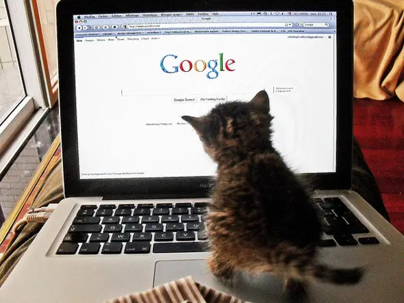 #16 Google