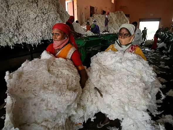 China Has Half The World's Cotton Under Lockdown, Which Could Make It More Expensive