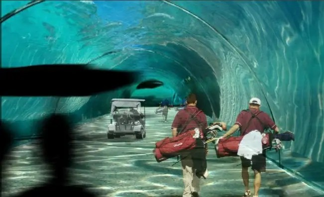 Amazing Underwater Tunnel