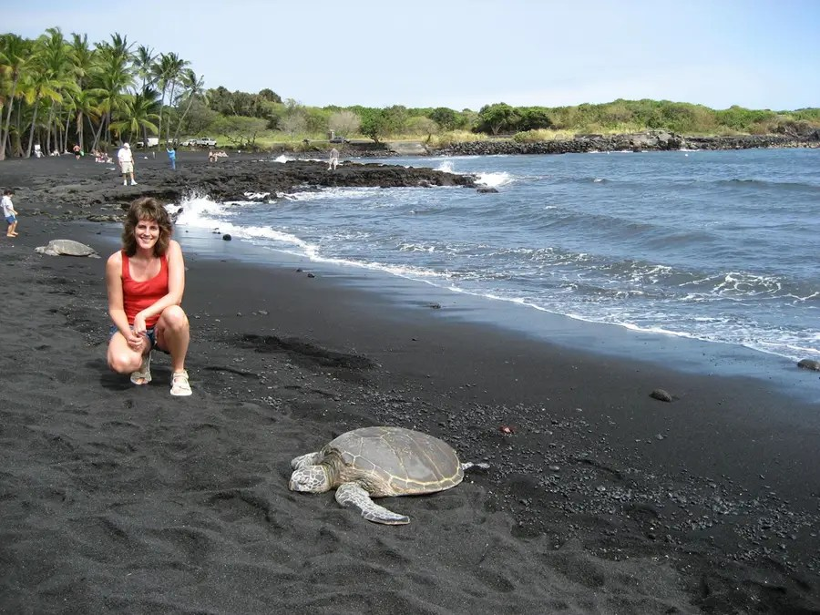 Punalu'u Beach is a gorgeous black-sand beach on Hawaii's Big Island. It's not the best for swimming, but it is a great place to see turtles, seals, and other wildlife.