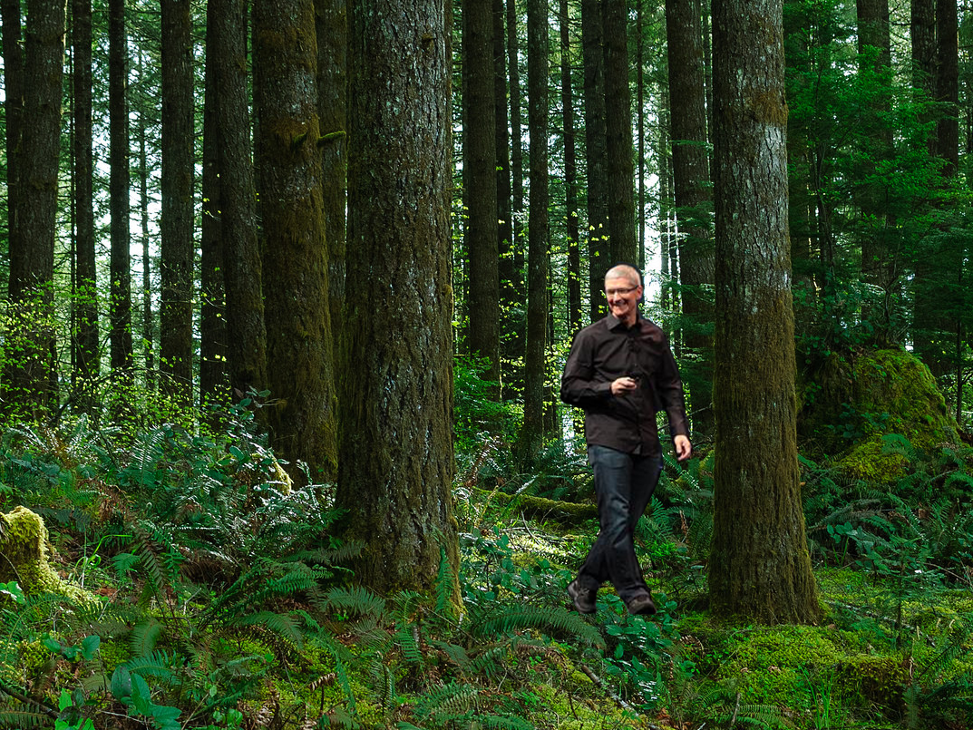 Apple just bought 36,000 acres of private forestland
