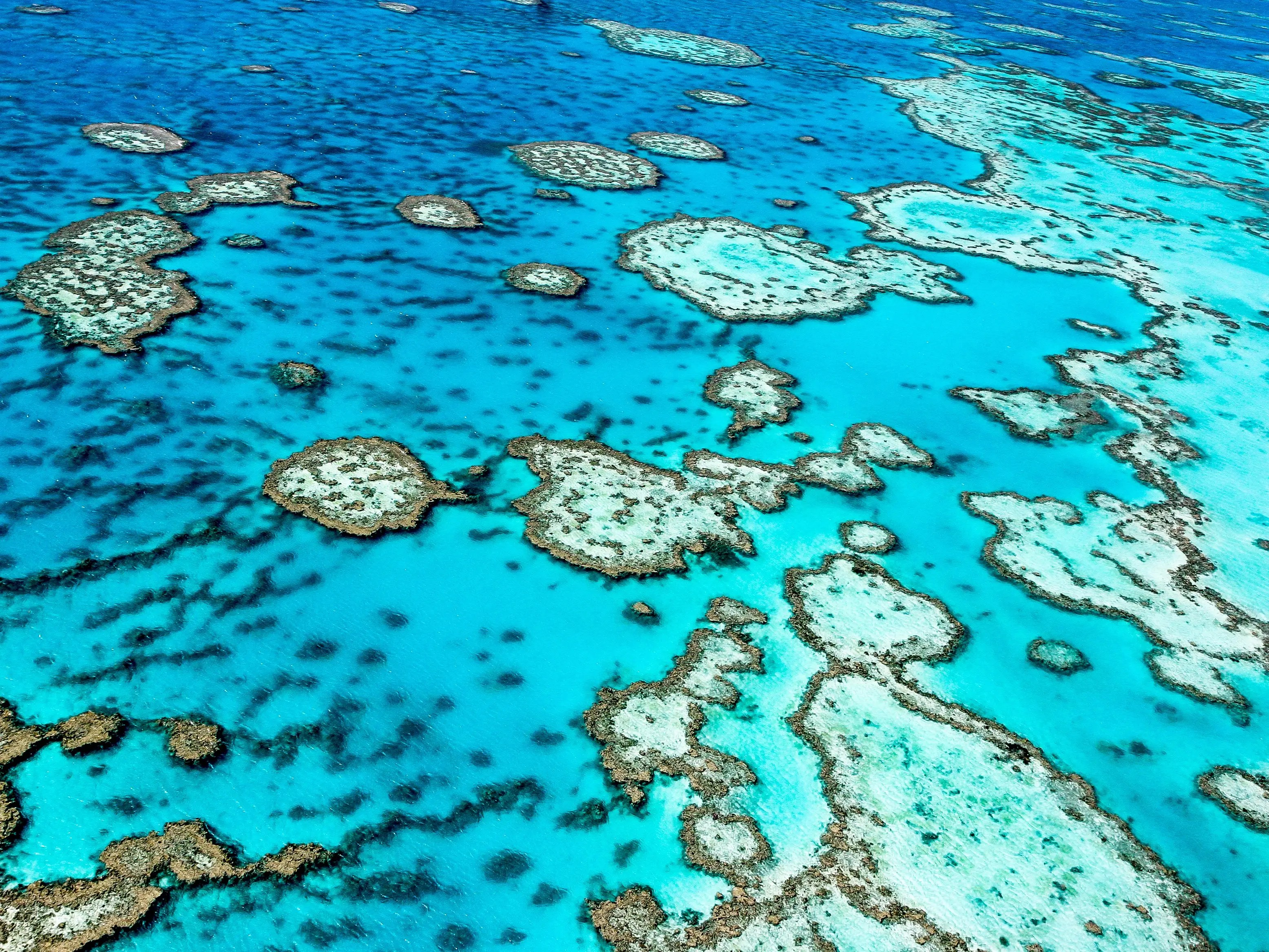 2. Great Barrier Reef, Australia
