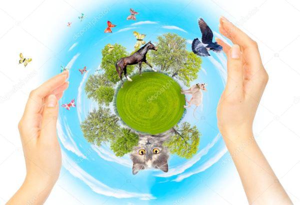 Картинки экология природы. Природа, экология и защита ...