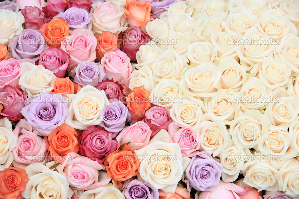 Pastel Rose Wedding Flowers Stock Photo Portosabbia