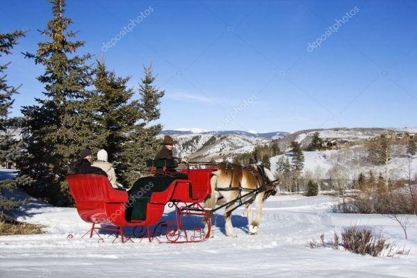 Зимняя поездка салазок. — Стоковое фото © iofoto #9226373