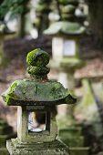 picture of taima-ji  - Japan Mara Stone lantern in garden - JPG