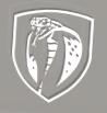 [2016-06-23] snake_icon