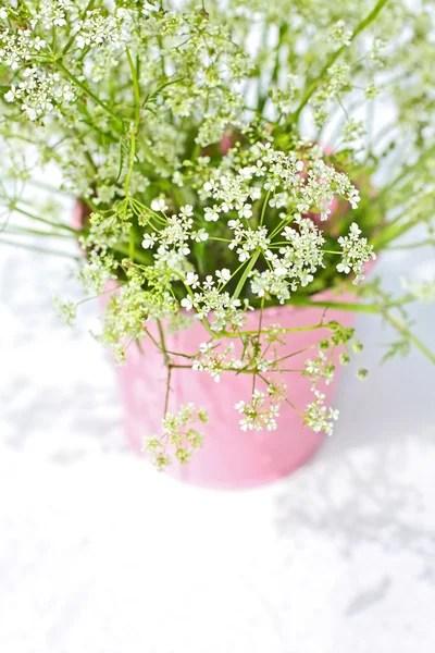 Стокові фотографії Польові квіти та роялті-фрі зображення ...