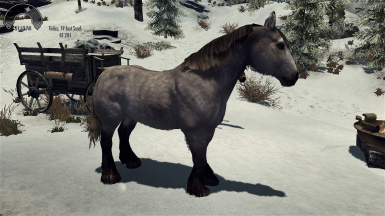 realistic horse mod skyrim se # 3