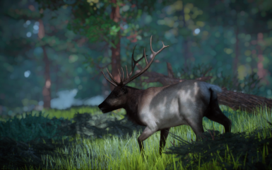 The more i play the classic the more i realize that the only advantage of the cotw is graphic and some nice music. 1 6 New Speices Rocky Mountain Elk Purewinter At Planet Zoo Nexus Mods And Community