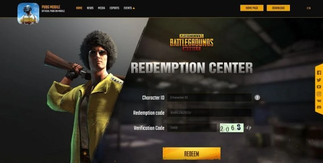You need to enter your ID and other required details (Photo for PUBG Mobile)
