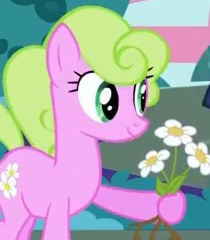 Voice Of Daisy In My Little Pony Friendship Is Magic Show Behind The Voice Actors