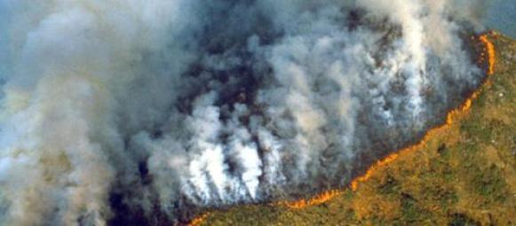 """Résultat de recherche d'images pour """"amazonia burning"""""""