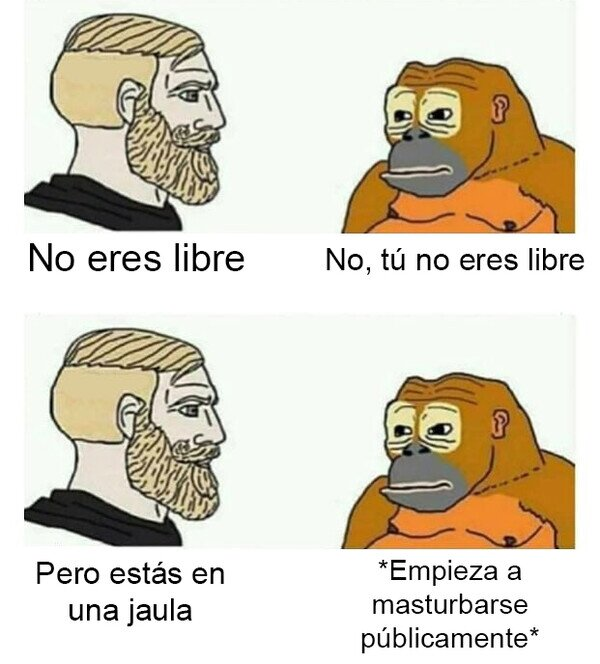 ¿Qué es la libertad?