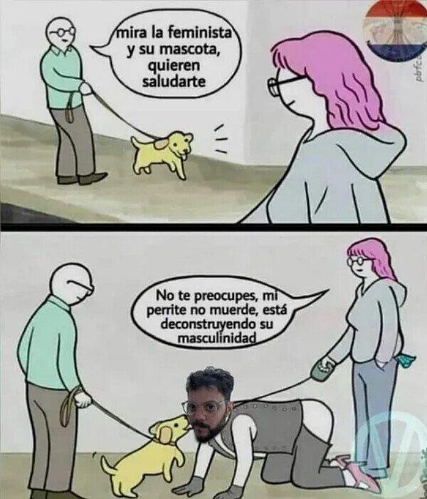 Feministas paseando al perro