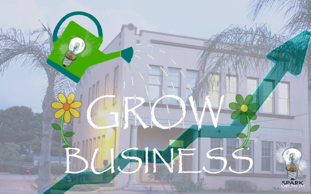 """""""The Naked Economy"""" and Other Things You Should Know to Start and Grow a Business in Today's Marketplace"""