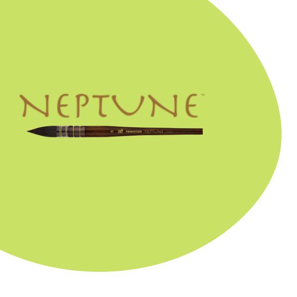 Princeton Neptune