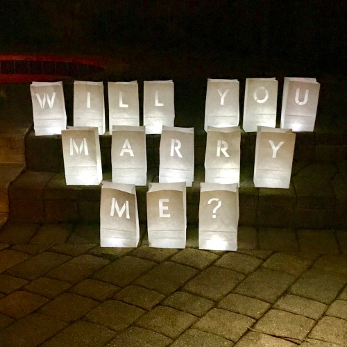 "Luminary Proposal Bags - ""Will You Marry Me?"""