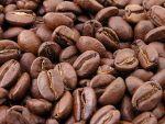 Kaffeepreise steigen