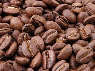 Kaffeekonsum nach Ländern: Wo steht Deutschland im internationalen Vergleich?