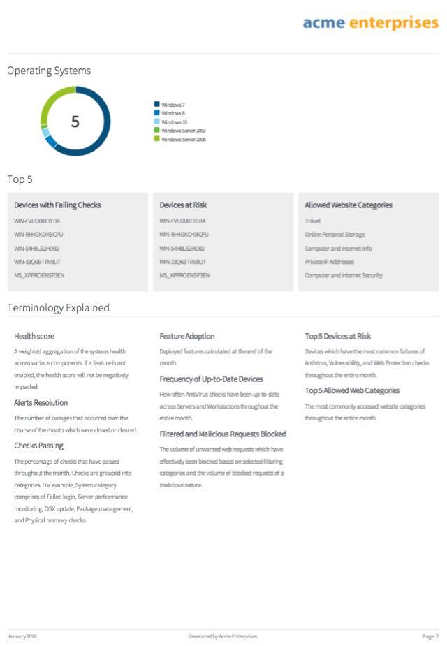 executive summary report 6