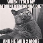 Fitness Funny Quotes
