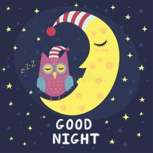 gud night dp for whatsapp, good night status for whatsapp